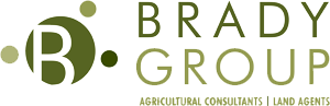 Brady-group-logo300 - Copy - Copy