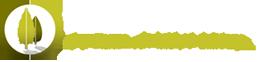 FS Logo - Copy